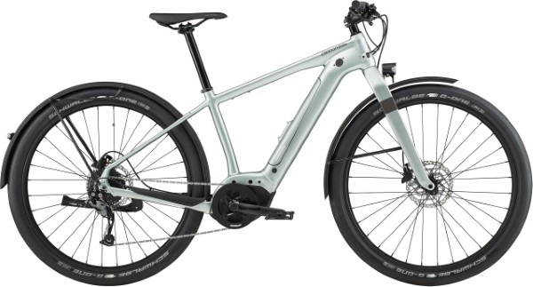 2020 Cannondale Canvas Neo 2