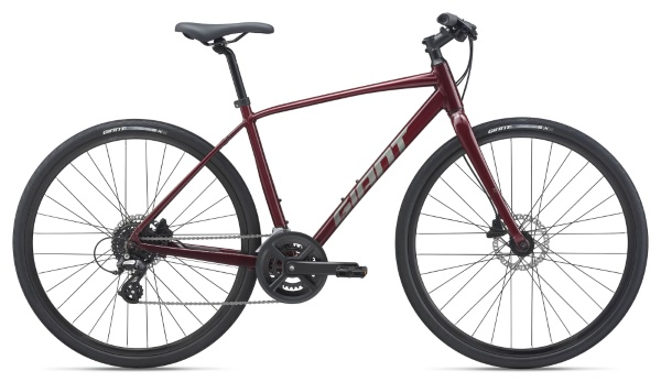2021 Giant Escape 2 Disc